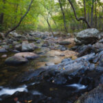 Things to Do in Ste. Genevieve - Golden Morning: pickle creek at hawn